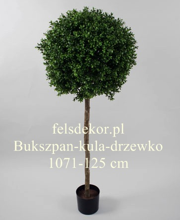 picture/bukszpan_kulka_drzewko_1071-125.jpg