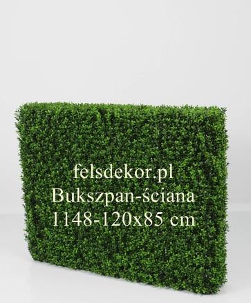 picture/bukszpan_sciana_1148-120x85.jpg