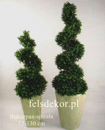 picture/bukszpan_spirala_12-130.jpg