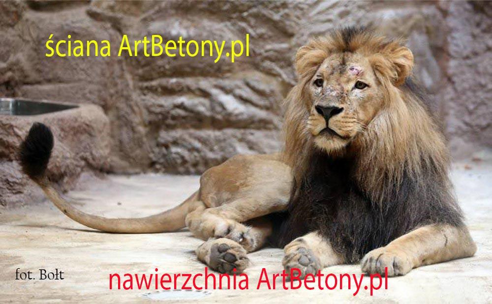 picture/felsdekor_2_dekorbet_copsa_kunstfelsen_decoflex_gdansk_zoo_lwy_01.jpg