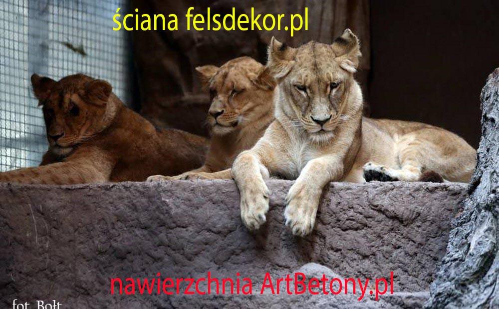 picture/felsdekor_2_dekorbet_copsa_kunstfelsen_decoflex_gdansk_zoo_lwy_02.jpg