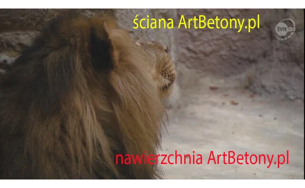 picture/felsdekor_2_dekorbet_copsa_kunstfelsen_decoflex_gdansk_zoo_lwy_03.jpg