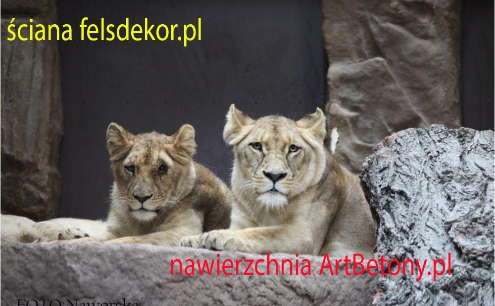 picture/felsdekor_2_dekorbet_copsa_kunstfelsen_decoflex_gdansk_zoo_lwy_15.jpg