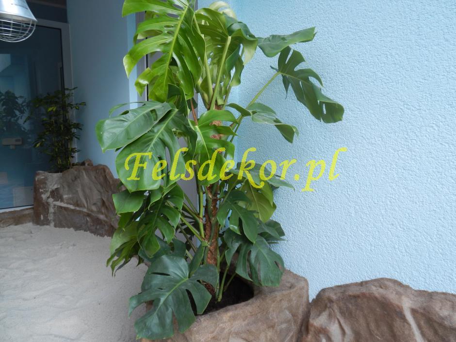 picture/felsdekor_dekorbet_copsa_decoflex_bydgoszcz_zoo_krokodyl_35.jpg