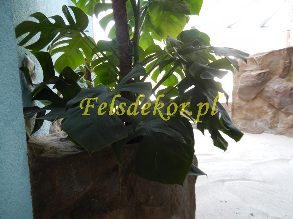 picture/felsdekor_dekorbet_copsa_decoflex_bydgoszcz_zoo_krokodyl_39.jpg