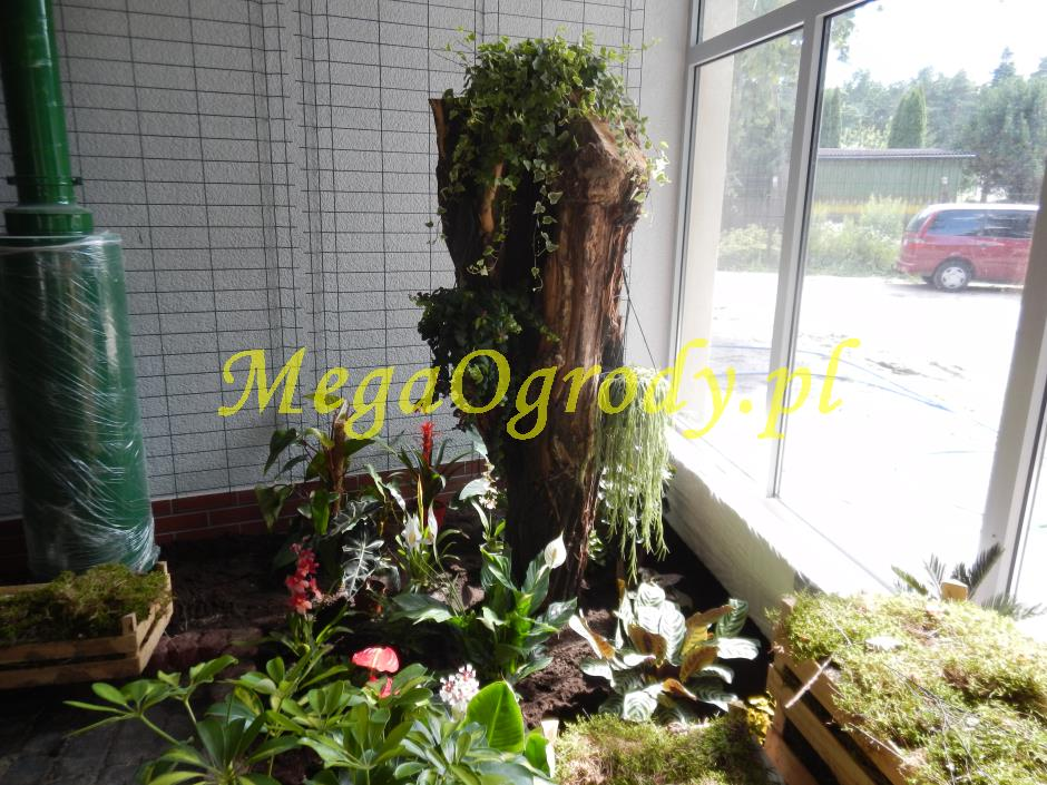 picture/felsdekor_dekorbet_copsa_decoflex_bydgoszcz_zoo_motylarnia_15.jpg
