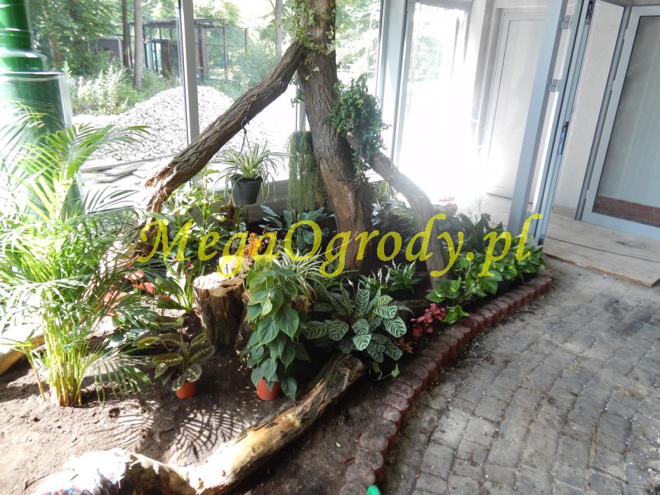 picture/felsdekor_dekorbet_copsa_decoflex_bydgoszcz_zoo_motylarnia_17.jpg