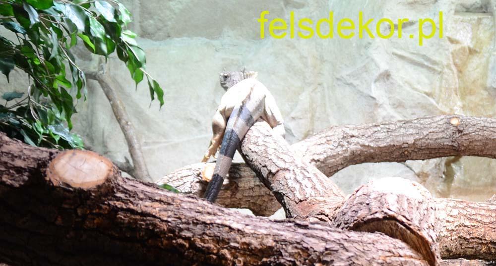 picture/felsdekor_dekoret_sika_copsa_kunstfelsen_terrarium_reptilien_kriechtiere_34.jpg