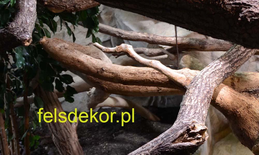 picture/felsdekor_dekoret_sika_copsa_kunstfelsen_terrarium_reptilien_kriechtiere_35.jpg