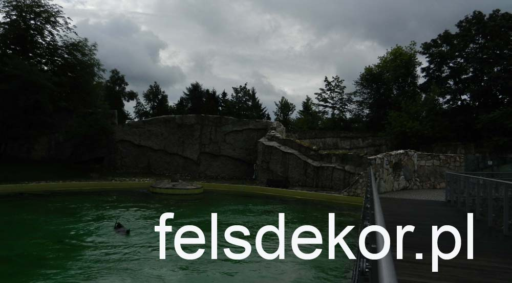 picture/zoo_wroclaw_foki_2_lata_sztuczna_skala_felsdrekor_kunstfelsen_12.jpg