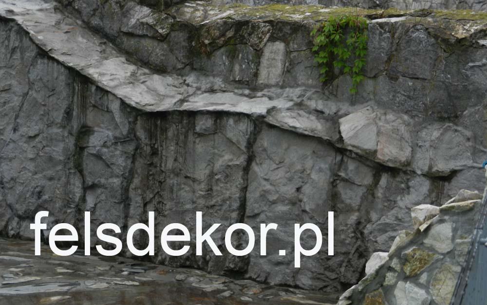 picture/zoo_wroclaw_foki_2_lata_sztuczna_skala_felsdrekor_kunstfelsen_6.jpg