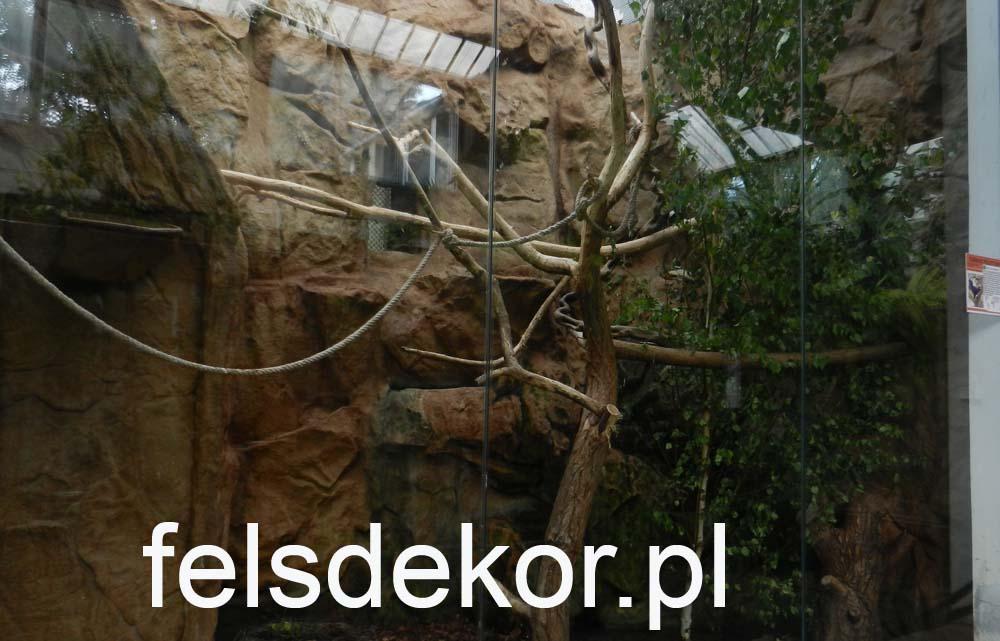 picture/zoo_wroclaw_ptaszarnia_felsdekor_kunstfelsen_10_lat_12.jpg