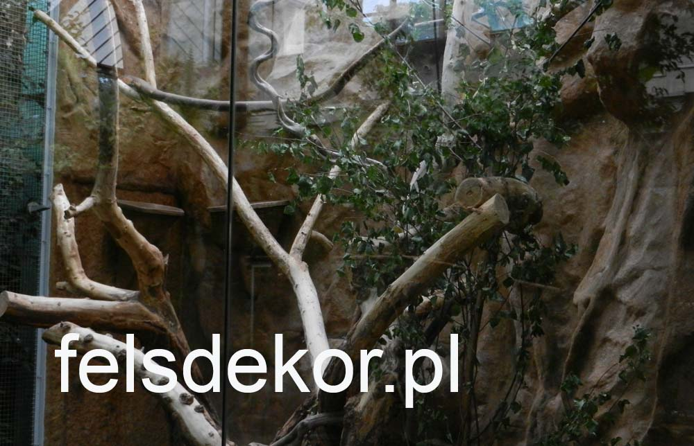 picture/zoo_wroclaw_ptaszarnia_felsdekor_kunstfelsen_10_lat_20.jpg