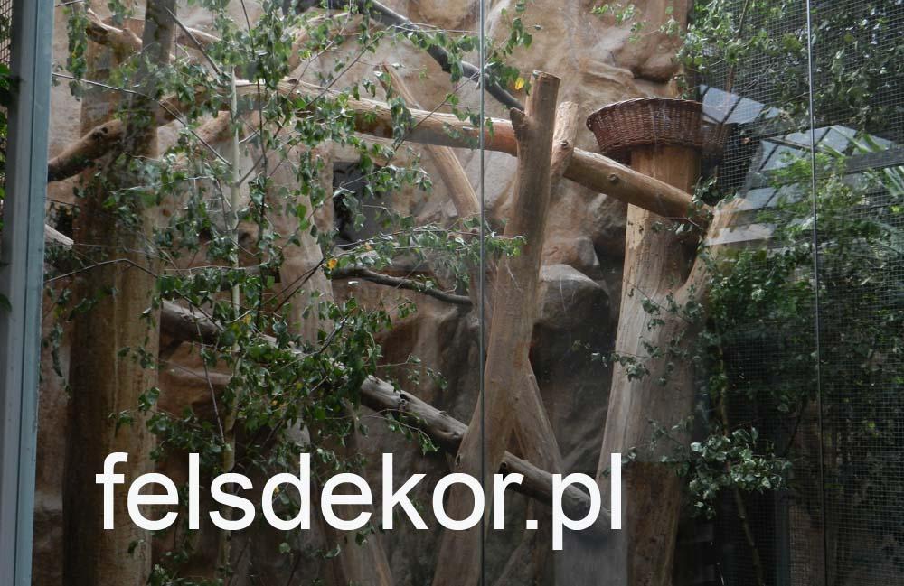 picture/zoo_wroclaw_ptaszarnia_felsdekor_kunstfelsen_10_lat_21.jpg