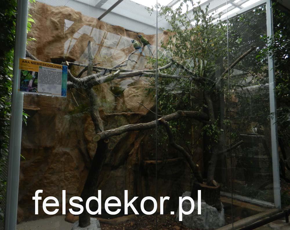picture/zoo_wroclaw_ptaszarnia_felsdekor_kunstfelsen_10_lat_23.jpg