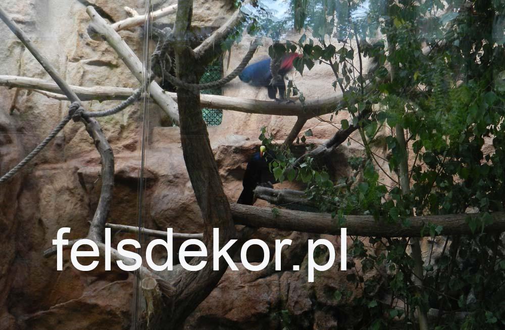 picture/zoo_wroclaw_ptaszarnia_felsdekor_kunstfelsen_10_lat_25.jpg