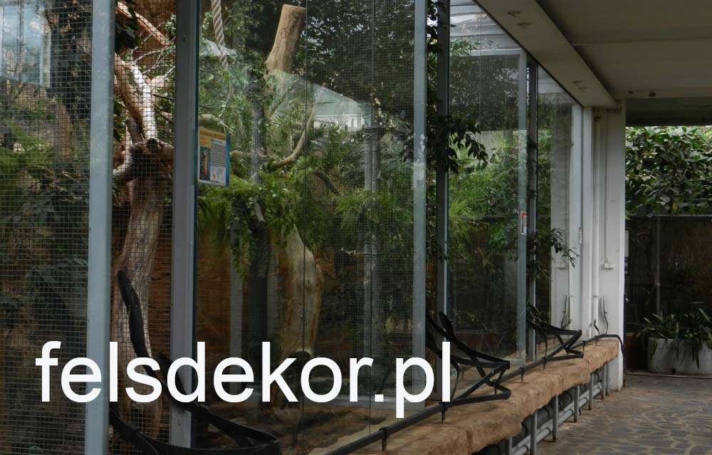 picture/zoo_wroclaw_ptaszarnia_felsdekor_kunstfelsen_10_lat_3.jpg