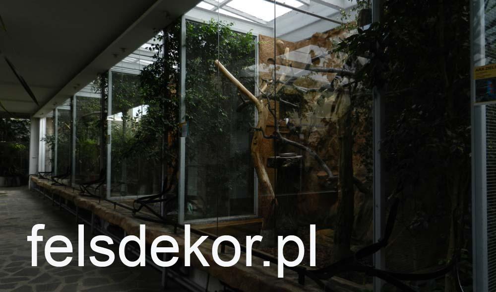 picture/zoo_wroclaw_ptaszarnia_felsdekor_kunstfelsen_10_lat_4.jpg