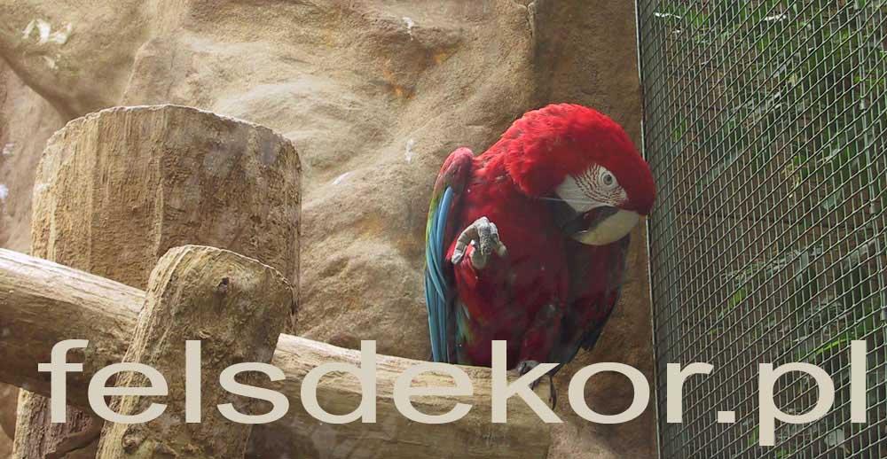 picture/zoo_wroclaw_ptaszarnia_prawa_felsdekor_0.jpg