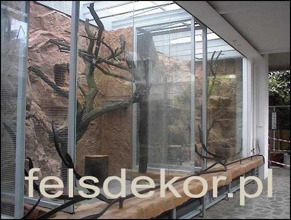 picture/zoo_wroclaw_ptaszarnia_prawa_felsdekor_10.jpg