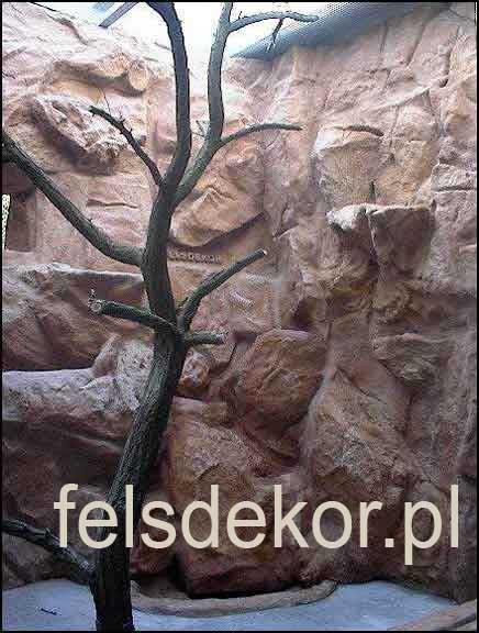 picture/zoo_wroclaw_ptaszarnia_prawa_felsdekor_8.jpg