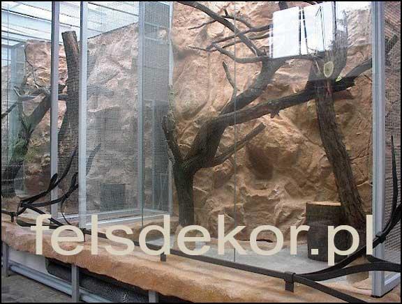 picture/zoo_wroclaw_ptaszarnia_prawa_felsdekor_9.jpg